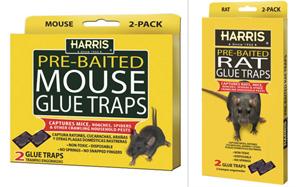 MOUSE/RAT GLUE TRAP